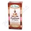 DR.POPOV Psyllium 100g