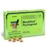 Bioaktivni Pycnogenol tbl.30 + ZDARMA Sada náplastí s polštářkem 5 kusů