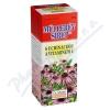 DR.MULLERŮV sirup echinacea+vitC 320g